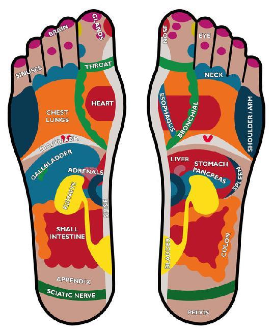 Reflexologie plosky nohy